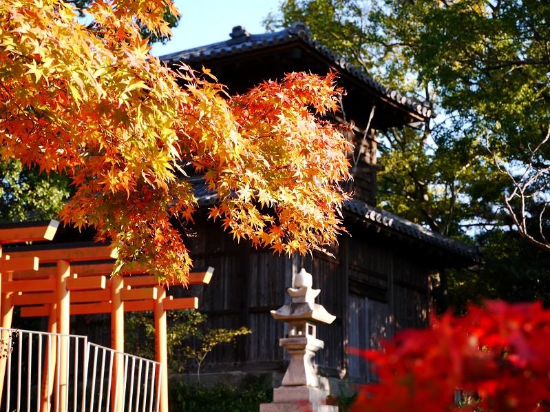 和歌山城公園散策_b0093754_223836100.jpg