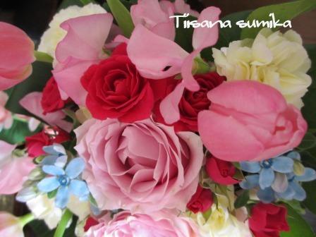 小さな庭の紅葉(2)_a0243064_14211493.jpg