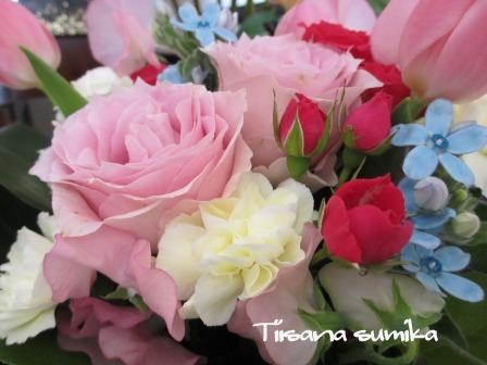 小さな庭の紅葉(2)_a0243064_14213532.jpg