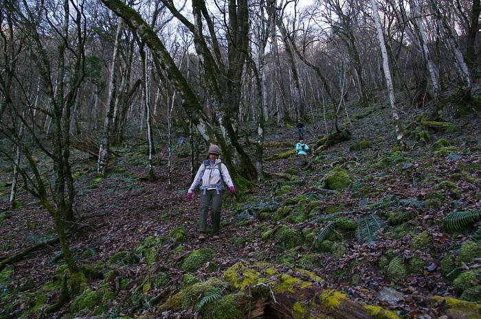 初冬の茂来山は絶景の山 その2_e0292469_1719864.jpg