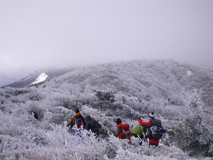 今季初の雪山歩きは蔵王の名号峰から ~ 2012年11月25日_f0170180_12313577.jpg