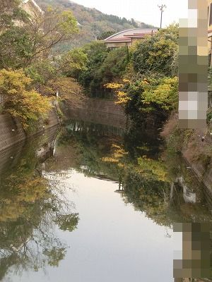 日替わりお天気_e0222588_171138.jpg