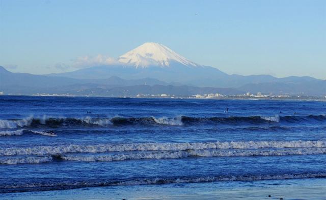 新江ノ島水族館 海のクリスマス ミズクラゲのクリスマスツリー_b0145398_0314048.jpg