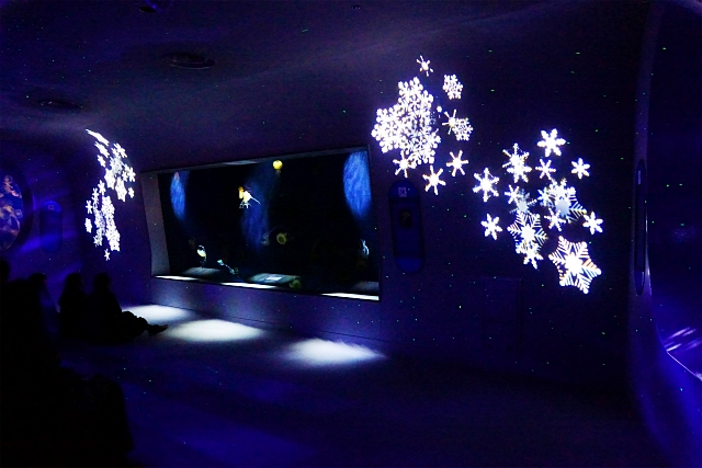 新江ノ島水族館 海のクリスマス ミズクラゲのクリスマスツリー_b0145398_0403029.jpg