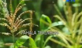 インドネシアのテレビ映画最優秀賞:Piala Vidia FFI 2012_a0054926_18112573.png