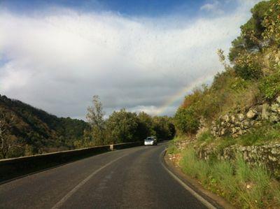 大雨,雷、晴れ,そして虹。_d0136540_4374810.jpg