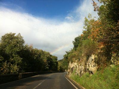 大雨,雷、晴れ,そして虹。_d0136540_4381071.jpg