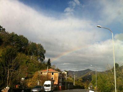 大雨,雷、晴れ,そして虹。_d0136540_4385268.jpg