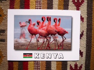 post card from KENYA_e0230141_1335764.jpg