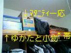 b0003855_13302231.jpg