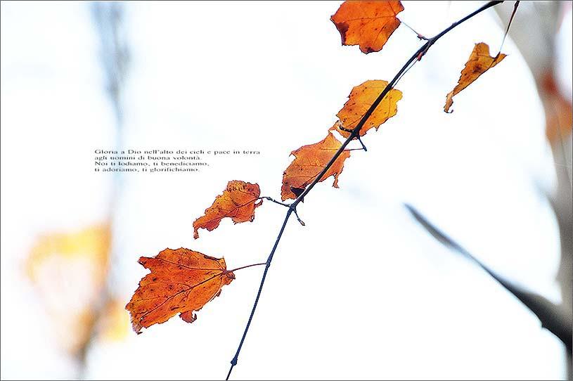 f0198771_05301.jpg