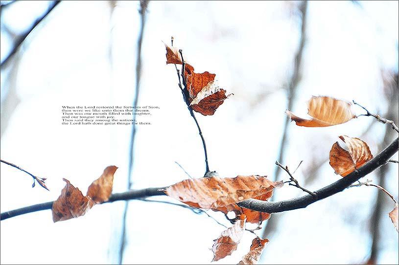 f0198771_055936.jpg