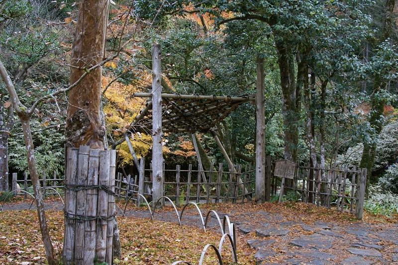 西山荘の紅葉 常陸太田市_b0183886_1411623.jpg