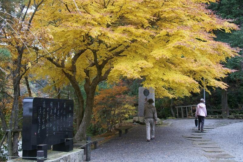 西山荘の紅葉 常陸太田市_b0183886_14552725.jpg