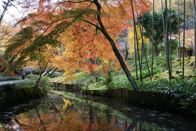西山荘の紅葉 常陸太田市_b0183886_19411224.jpg