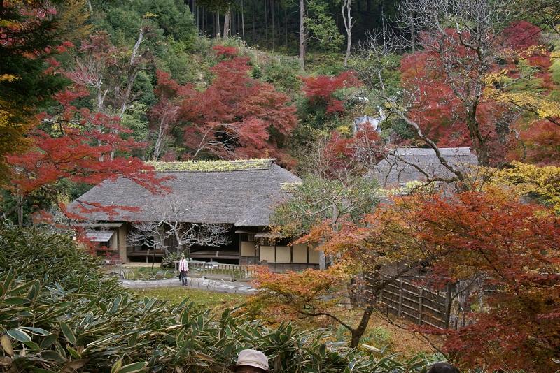 西山荘の紅葉 常陸太田市_b0183886_222925.jpg