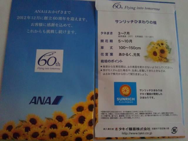 ヒマワリ畑_d0099708_18171299.jpg