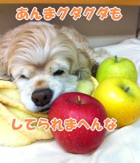 b0067012_1364249.jpg