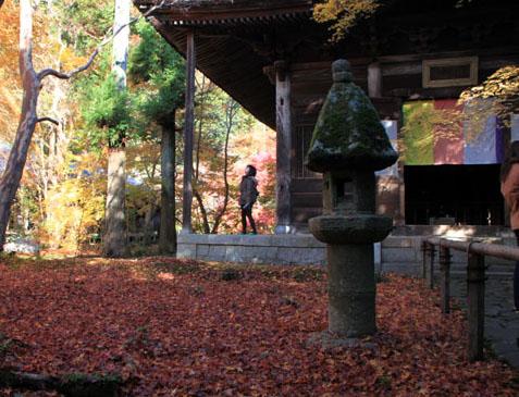 紅葉だより62 蓮華寺 散りモミジ_e0048413_19514157.jpg