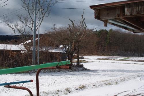 今季二度目の積雪_c0110869_14395473.jpg