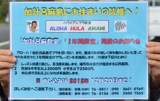 ハワイアンフラ「加計呂麻教室」が始まります!_e0028387_12394260.jpg