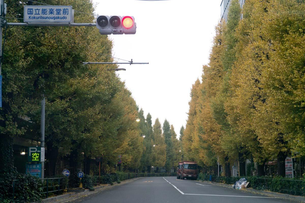 11月最後の日_a0271402_2022367.jpg