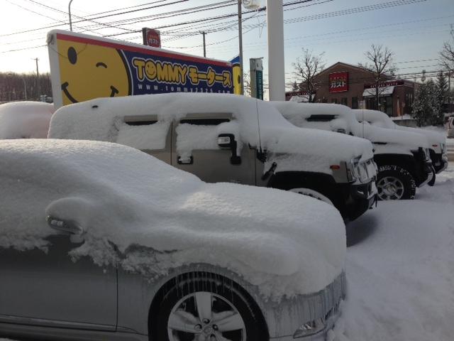 雪に埋れたトミー^_^_b0127002_10104166.jpg