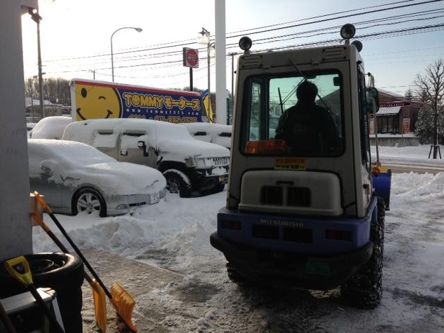 雪に埋れたトミー^_^_b0127002_10104169.jpg