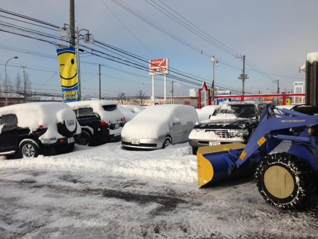 雪に埋れたトミー^_^_b0127002_10104185.jpg