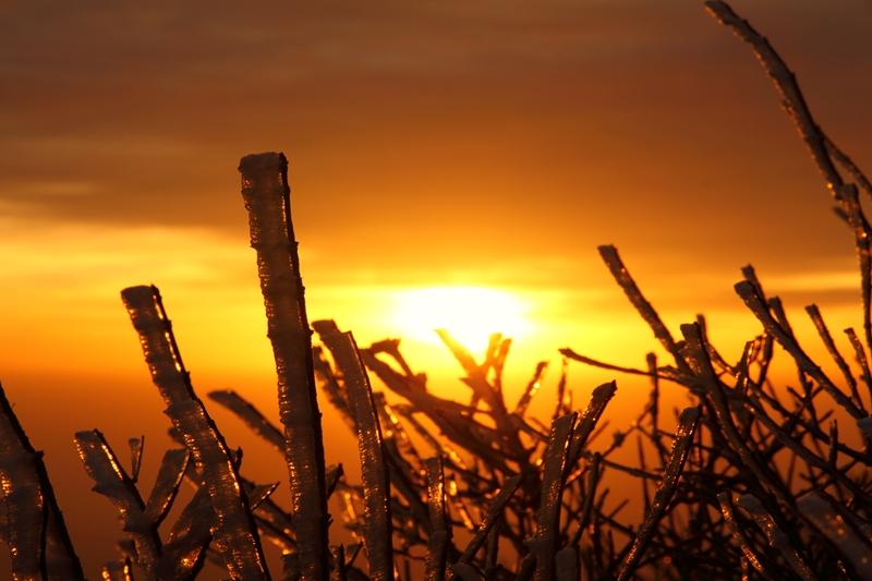 うっすら雪を纏った九重へ朝駆け_a0097006_2356473.jpg