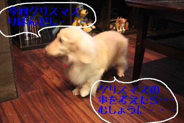 こんにちわぁ~~!!_b0130018_11142173.jpg