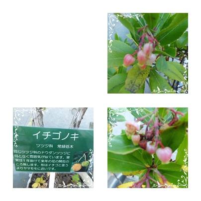 f0031546_19422610.jpg