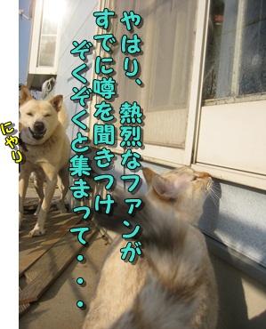 b0151748_1045188.jpg