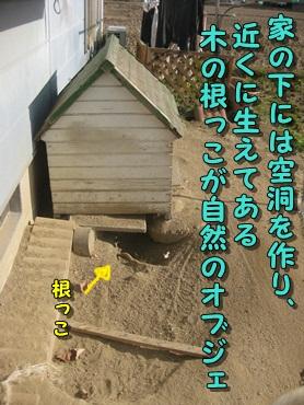 b0151748_10455764.jpg