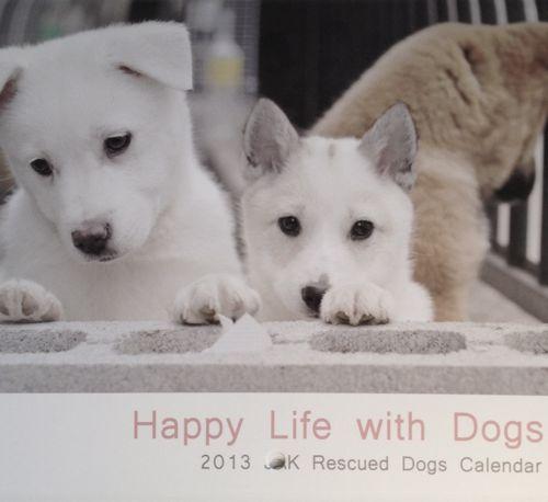 チャリティー保護犬カレンダー_e0190258_12401869.jpg