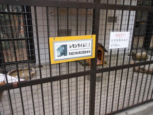 日本で二番目~その2~_c0001670_14245893.jpg