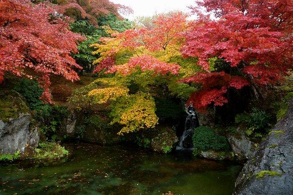 晩秋の風景・その2_d0030373_1873784.jpg