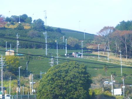 静岡県牧之原シリーズ  茶園の防霜ファンの役目を知る_b0011584_1684144.jpg