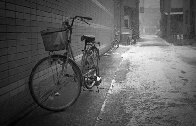 雪に凍える自転車_c0170584_18212865.jpg