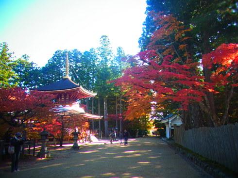 2日目:高野山散策 _a0207588_2219223.jpg