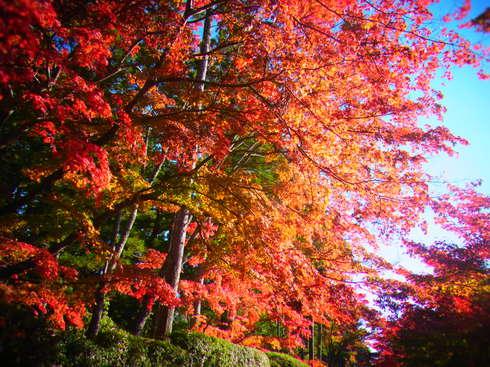2日目:高野山散策 _a0207588_2243633.jpg