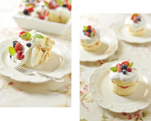 スコップケーキでクリスマス、もいいね。_d0174704_17344856.jpg