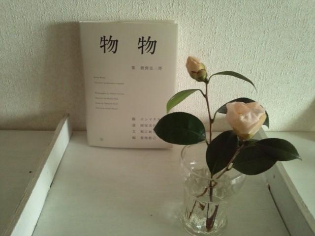 山茶花_c0171828_16562276.jpg