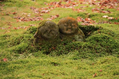 日吉神社・大原の紅葉   滋賀 京都_d0055236_2245392.jpg