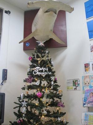 12月 3日 12月突入~_b0158746_165146.jpg