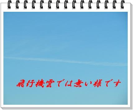 b0149071_1529183.jpg