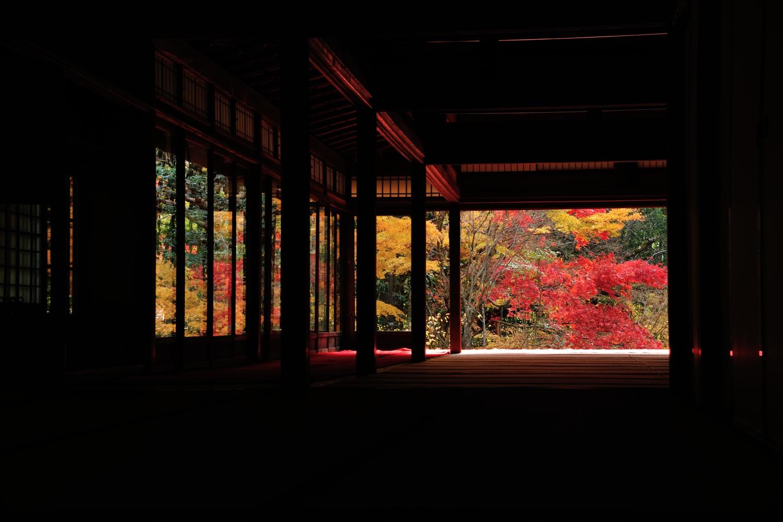 京都報告 その5(最終)_c0220824_18231254.jpg