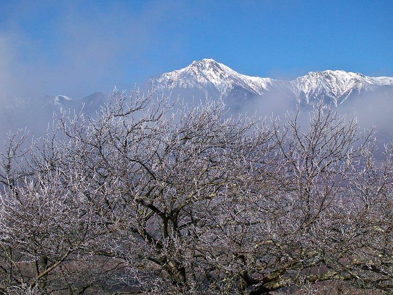 冬景色がやって来ました。_b0179231_0233362.jpg