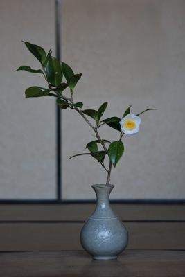 花だより・青松白瓷お知らせ_a0279848_21492481.jpg