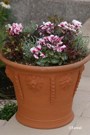 フラワーポットと植物_d0229351_13019.jpg